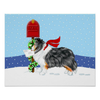Sheltie Christmas Mail Tri Color Poster