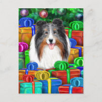 Sheltie Christmas Open Gifts Blue Merle Holiday Postcard