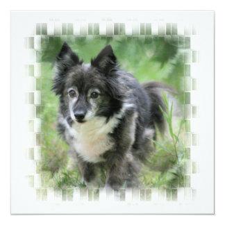 Sheltie Dog Invitation