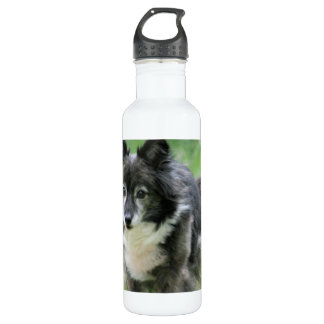 Sheltie Dog Picture 24oz Water Bottle