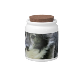 Sheltie Dog Picture Candy Jar