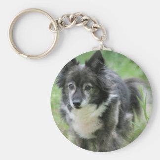 Sheltie Dog Picture Keychain