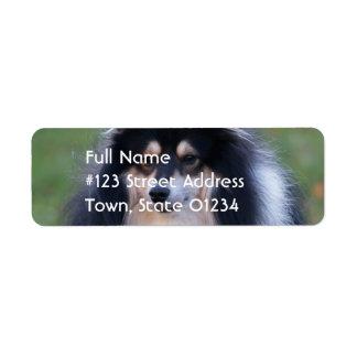 Sheltie Dog Return Address Label