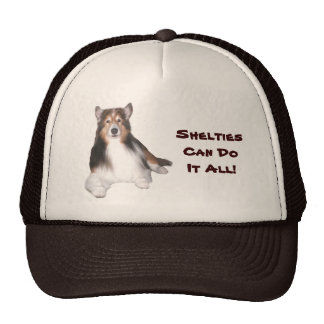 Sheltie Hat