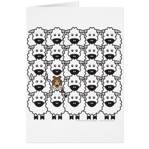 Sheltie in the Sheep Card