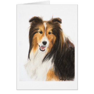 Sheltie o pintura del perro pastor de Shetland Tarjeta Pequeña