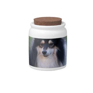 Sheltie Photo Candy Jar