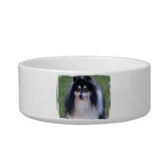 Sheltie Photo Pet Bowl Cat Water Bowls