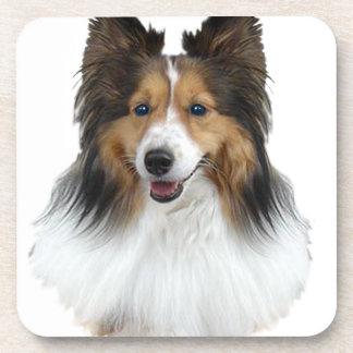 Sheltie Portrait Coaster