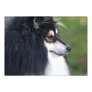Sheltie Puppy Invitation
