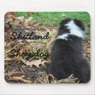 Sheltie Puppy Mouse Pad