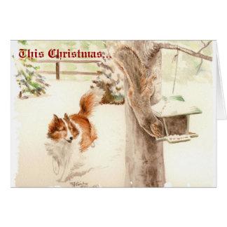 Sheltie que persigue la tarjeta de Navidad de la a