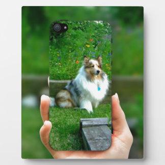 Sheltie Rescued Dog Lover Plaque
