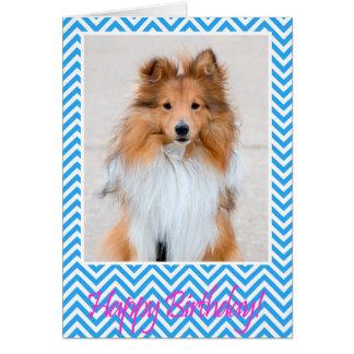 Sheltie Shetland Sheepdog Happy Birthday Card Blue