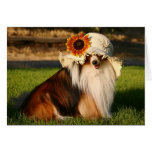 Sheltie with Hat Greeting Card