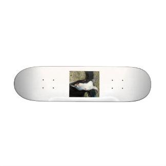 Shelton Goat Farm Skate Board Decks