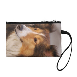 Shelty coin purse