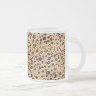Shemura Matzah Frosted Glass Coffee Mug