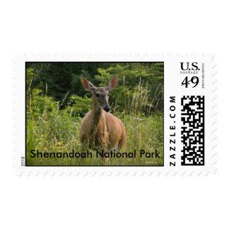 Shenandoah National Park Stamps