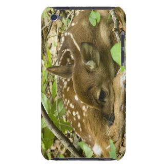 Shenandoah NP, Virginia, USA iPod Touch Case