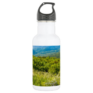 Shenandoah Stainless Steel Water Bottle