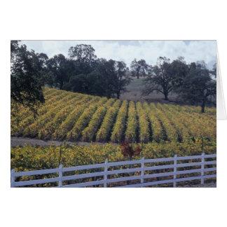 Shenandoah Valley Card
