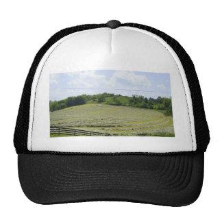 Shenandoah Valley Trucker Hat