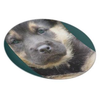 Shep Dog Plate