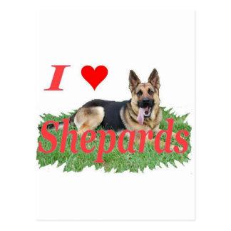 shepard2 postcard