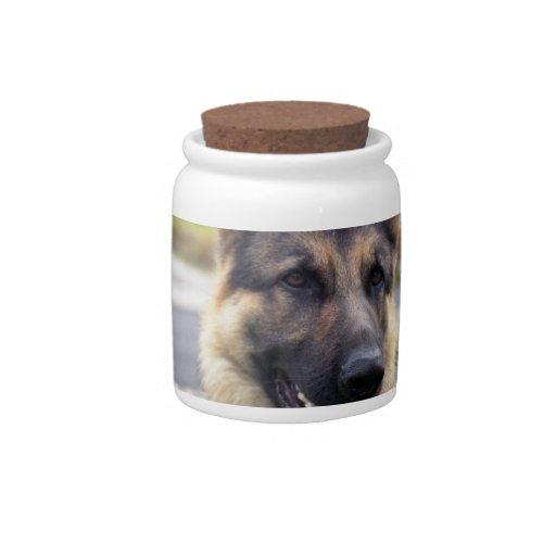 Shepherd Candy Jar