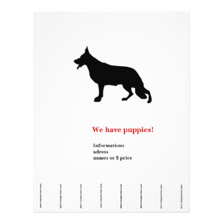 Shepherd Dog Flyer