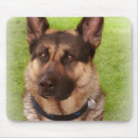 Shepherd Dog Mouse Pad