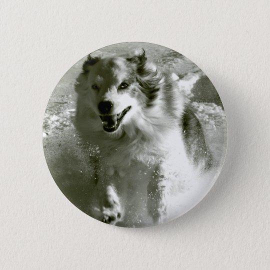 Shepherd Dog Running In Snow, Pinback Button