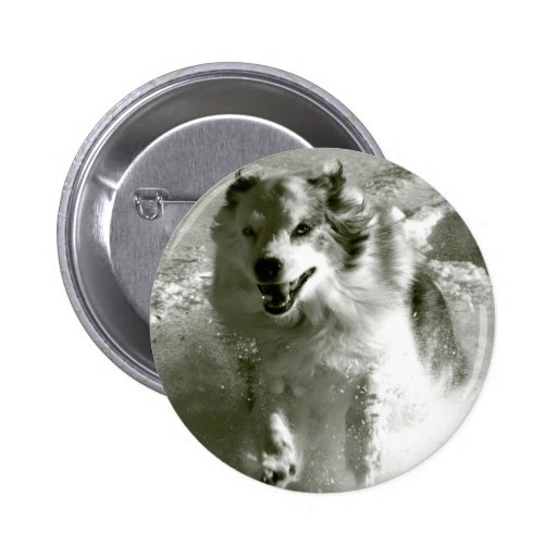 Shepherd Dog Running In Snow, Pinback Buttons