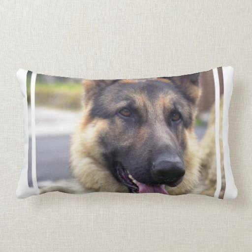 Shepherd Pillow
