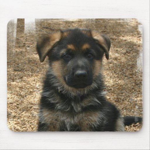 Shepherd Puppy  Mouse Pad