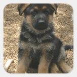 Shepherd Puppy  Sticker