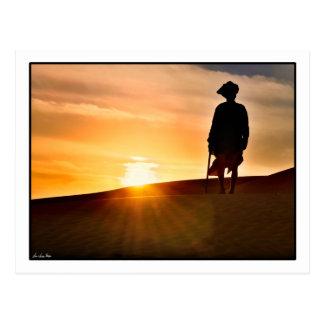 Shepherd Sunset Postcard
