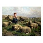 Shepherdess con las ovejas en un paisaje postales