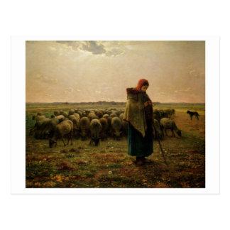 Shepherdess con su multitud, 1863 postales