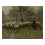 Shepherdess with a Flock of Sheep, Anton Mauve Poster