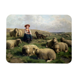 Shepherdess with Sheep in a Landscape Rectangular Photo Magnet