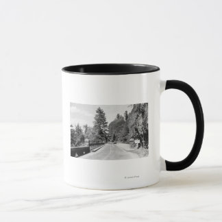 Shepherd's Dell on Columbia River Photograph 2 Mug