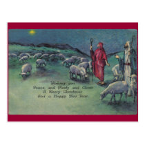 Shepherds Postcard