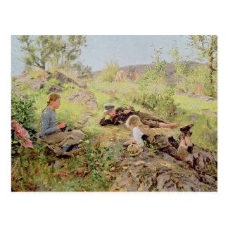 Shepherds, Tatoy, 1883 Postcard