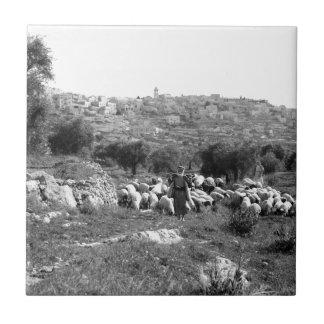 Shepherds tending flocks near Bethlehem Ceramic Tile