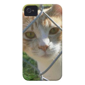 Sherbert de la esperanza pasada Case-Mate iPhone 4 carcasa