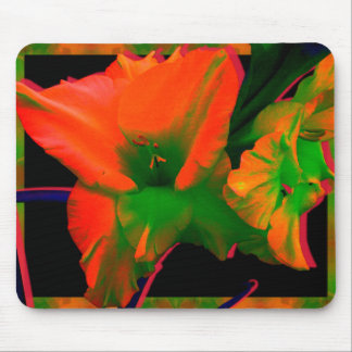 Sherbert Gladiolus Flowers Mouse Pad