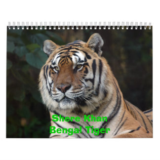 Shere Khan Calendar, Shere KhanBengal Tiger