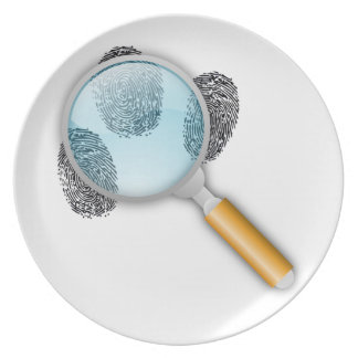 Sherlock of cross-beam dinner plate